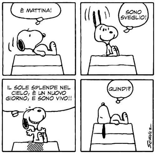 Snoopy-sono-sveglio