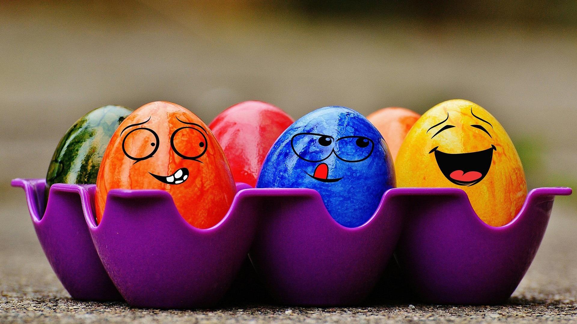 Pasqua familing