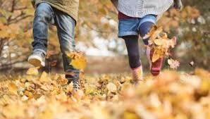 7-8 Ottobre a Prato con i bambini : cosa fare nel weekend