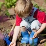 pinuslab_laboratorio_didattico_coltivare_bambini