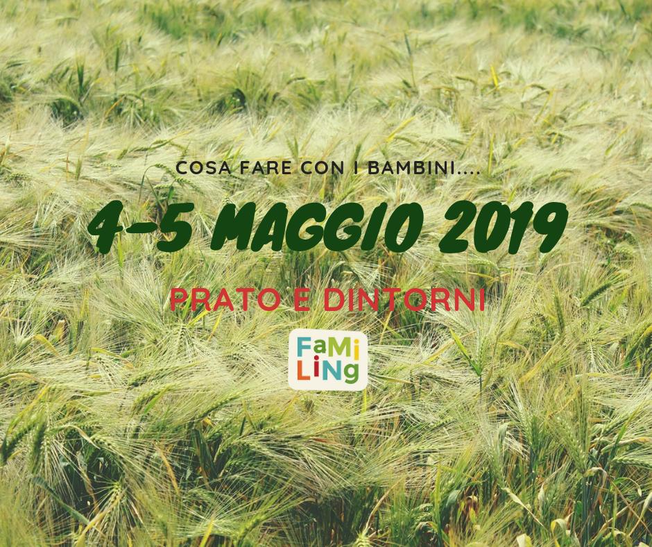 4-5 maggio 2019