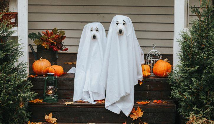 Family-Halloween-Events-Happening-Around