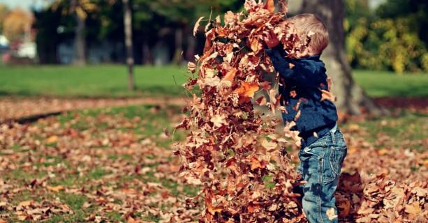 8-10 novembre: cosa fare con i bambini a Prato e dintorni