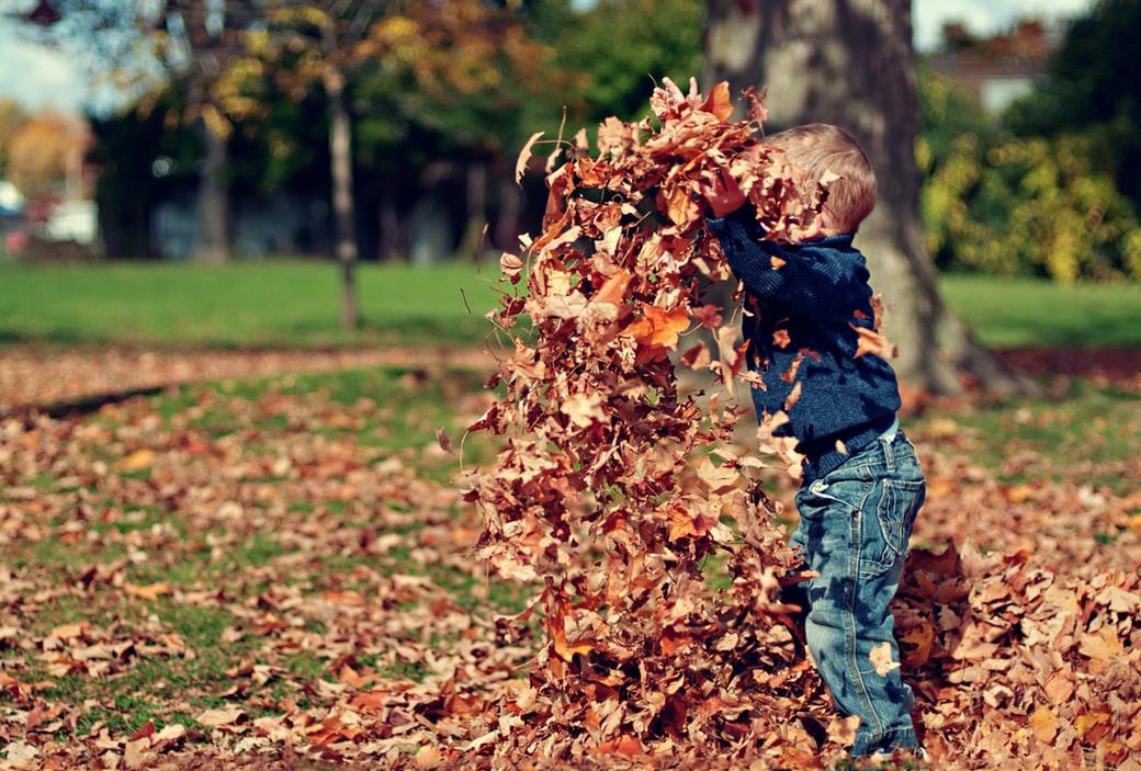 autunno copertina